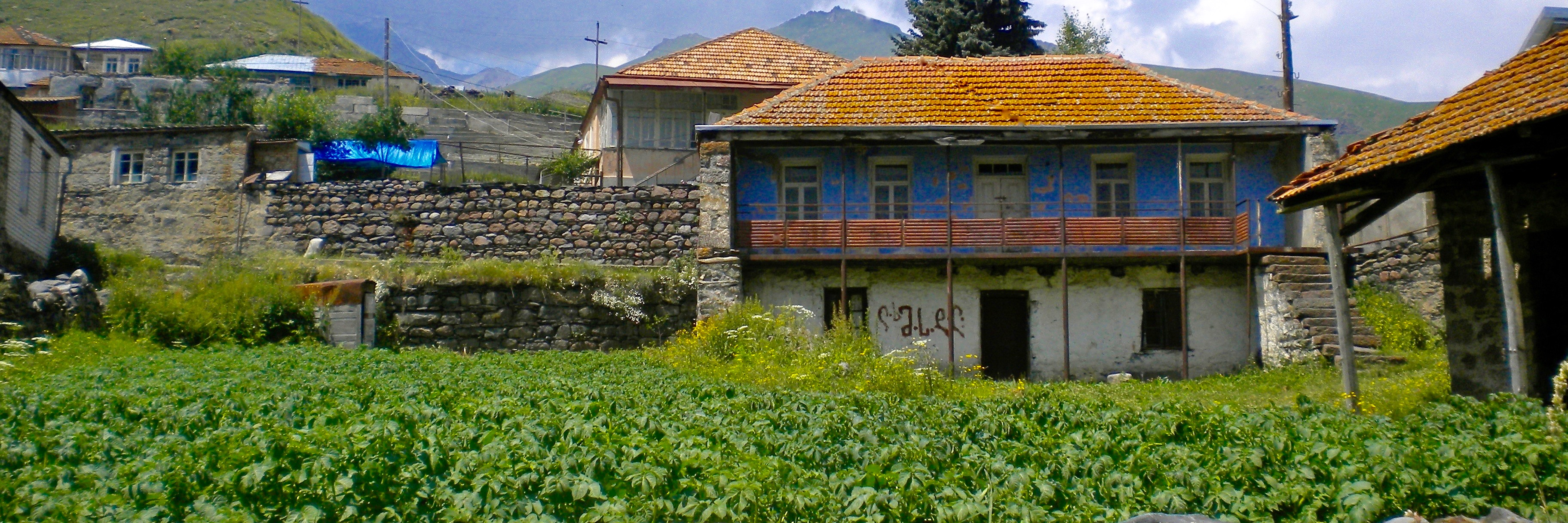 Caucasus Field and Case Studies