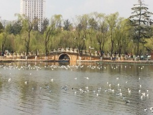 Green lake i Kunming
